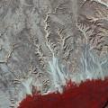 Eastern_Desert_large