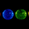 SOHO_s_summer_solstice_Sun_large