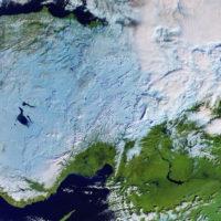 Cold_Turkey_large
