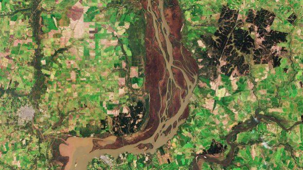 Uruguay_River_wetlands_large