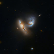 Galactic Creatures at Play