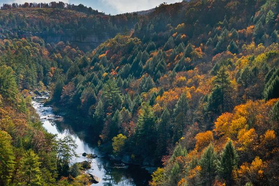 The Obed Wild and Scenic River, Tennessee