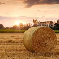 Satellites_provide_data_on_crops_card_full